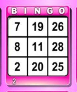 30-ball Bingo Card