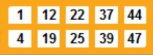 50-ball Bingo Card