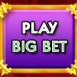 Big Bet Button