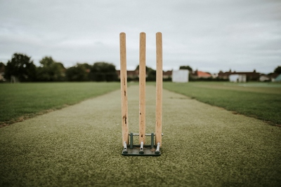 Cricket Wickets
