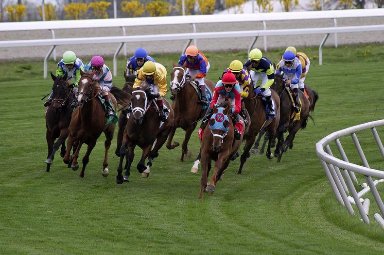 US horse race