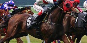 Epic horse racing