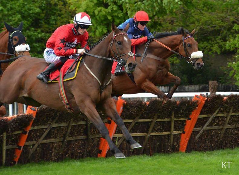 Jumps racing horses