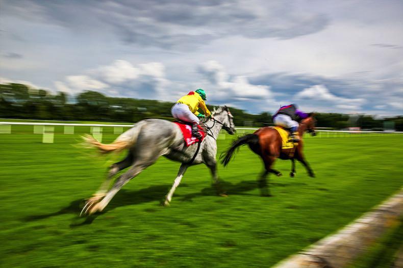 Blurry race horses